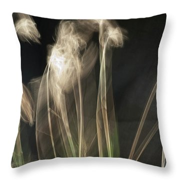 Throw Pillow featuring the photograph Blowing In The Wind by Roger Mullenhour