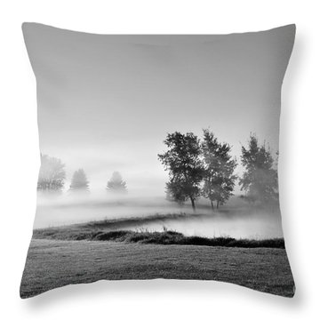 Throw Pillow featuring the photograph Blown Away by Terri Gostola