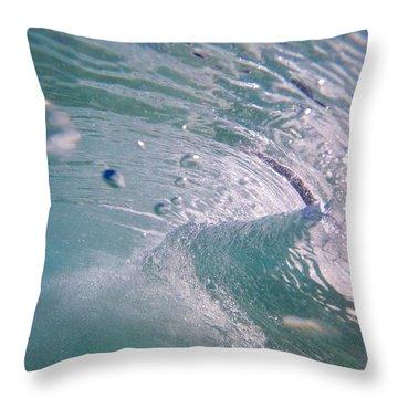 Blown Glass Throw Pillow