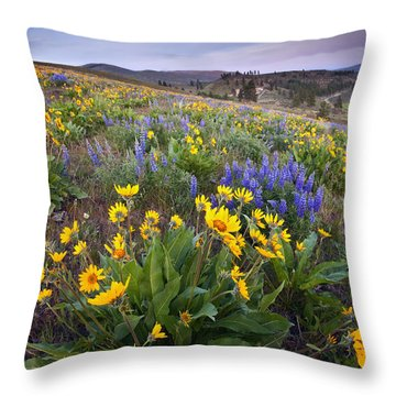 Blue And Gold Throw Pillow by Mike  Dawson