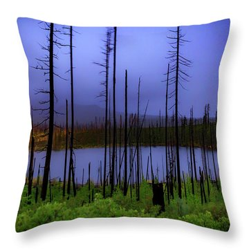 Throw Pillow featuring the photograph Blue And Green by Cat Connor