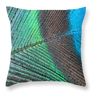 Blue And Green Feathers Throw Pillow