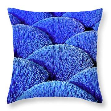 Blue Asia Sound Throw Pillow