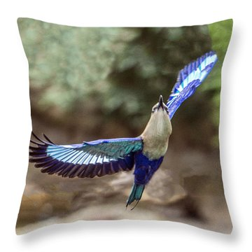 Blue-bellied Roller In Flight Throw Pillow