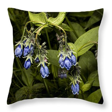 Blue Bells 2015 Throw Pillow