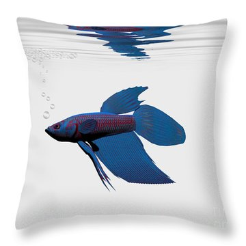 Blue Betta Throw Pillow by Corey Ford