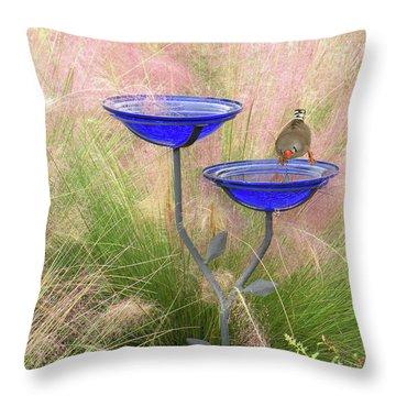 Blue Bird Bath Throw Pillow by Rosalie Scanlon