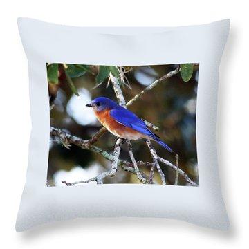 Blue Bird Throw Pillow by Lamarre Labadie