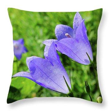 Hairbell - Campanula Rotundifolia Throw Pillow by Blair Wainman