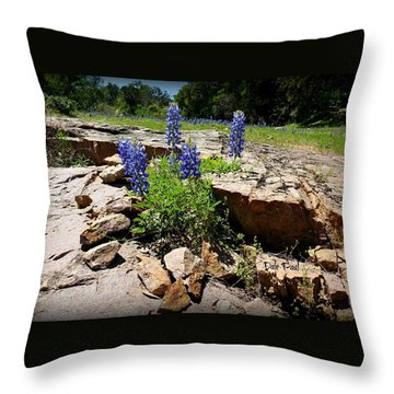 Blue Bonnets On The Rocks Throw Pillow