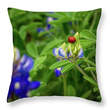Texas Blue Bonnet And Ladybug Throw Pillow
