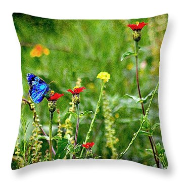 Blue Butterfly In Meadow Throw Pillow