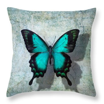 Blue Butterfly Resting Throw Pillow