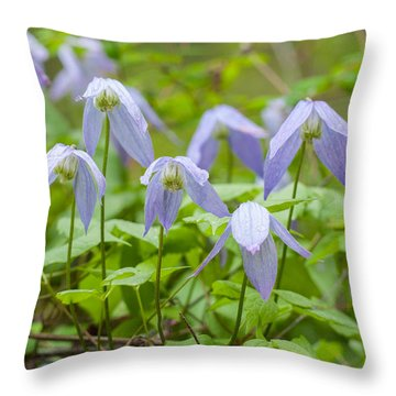 Throw Pillow featuring the photograph Blue Clematis by Fran Riley
