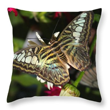 Blue Clipper Throw Pillow