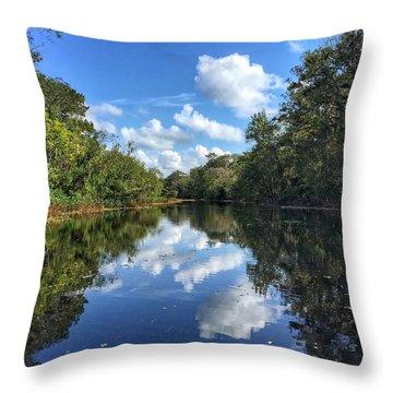 Blue Cloud Reflections  Throw Pillow