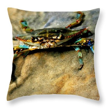 Blue Crab Throw Pillow by Joan McCool