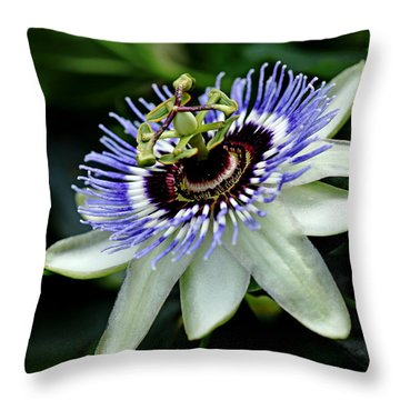 Blue Crown Passion Flower Throw Pillow by Debbie Oppermann
