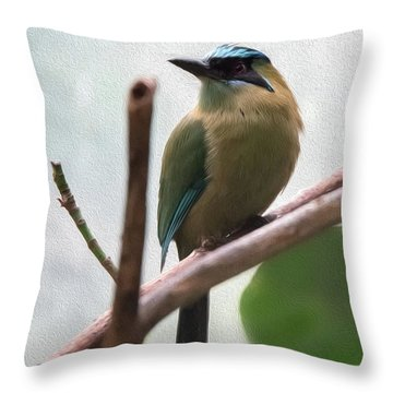 Blue-crowned Motmot Oil Throw Pillow