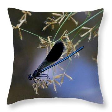 Blue Damsfly Throw Pillow