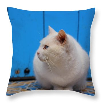 Throw Pillow featuring the photograph Blue Door White Cat by Ramona Johnston