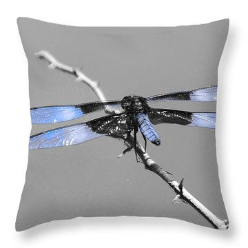 Blue Dragon Throw Pillow by Cindy Manero