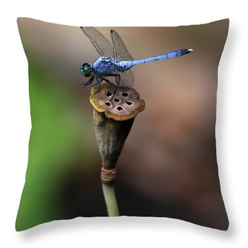 Blue Dragonfly Dancer Throw Pillow