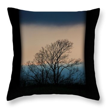 Throw Pillow featuring the photograph Blue Dusk by Chris Berry