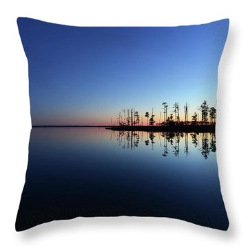 Blue Echo Throw Pillow