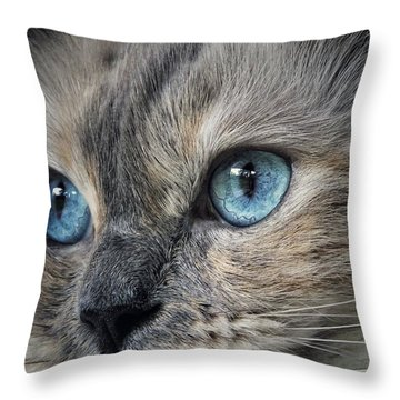 Blue Eyed Girl Throw Pillow by Karen Stahlros