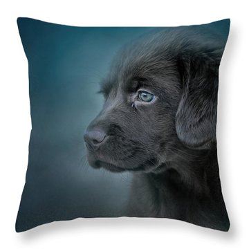 Blue Eyed Puppy Throw Pillow
