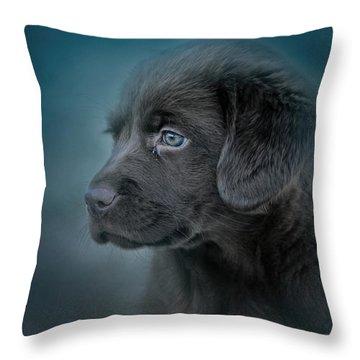 Blue Eyed Puppy Throw Pillow