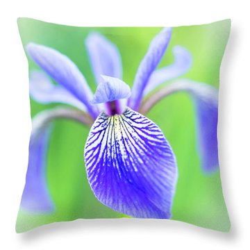 Blue Flag Iris As A Bee Sees It Throw Pillow by Jim Hughes