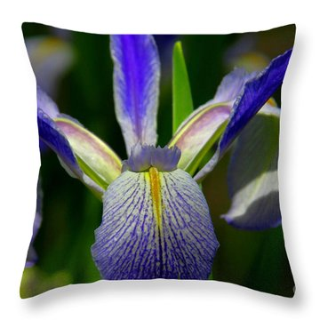 Blue Flag Iris Throw Pillow