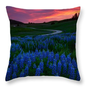 Throw Pillow featuring the photograph Blue Flame by Dustin  LeFevre