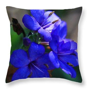 Blue For The Sun Throw Pillow