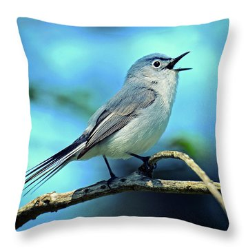 Throw Pillow featuring the photograph Blue-gray Gnatcatcher by Rodney Campbell