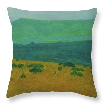 Blue-green Dakota Dream, 1 Throw Pillow