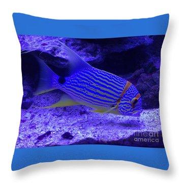 Blue Fish Groupie Throw Pillow