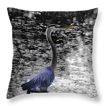 Blue Heron 2008 Throw Pillow by Joseph Duba