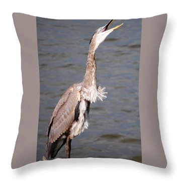 Blue Heron Calling Throw Pillow