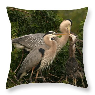 Throw Pillow featuring the photograph Blue Heron Family by Shari Jardina
