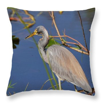 Blue Heron Throw Pillow by Helen Haw