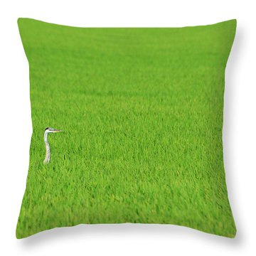 Blue Heron In Field Throw Pillow