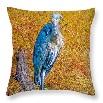 Throw Pillow featuring the photograph Blue Heron In Maryland by Nick Zelinsky