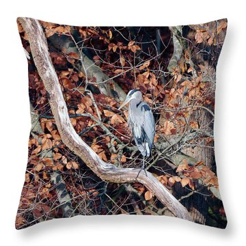 Blue Heron In Tree Throw Pillow