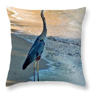 Blue Heron On The Beach Close Up Throw Pillow