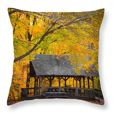 Blue Heron Park In The Fall 2 Throw Pillow by Kenneth Cole