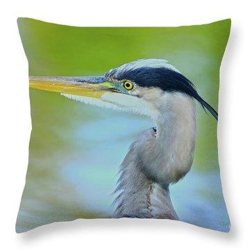 Throw Pillow featuring the photograph Blue Heron Portrait 2017 by Deborah Benoit