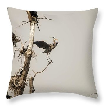 Throw Pillow featuring the photograph Blue Heron Posing by David Bearden